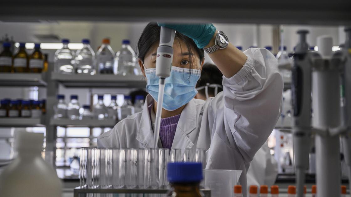 Врач работает в лаборатории