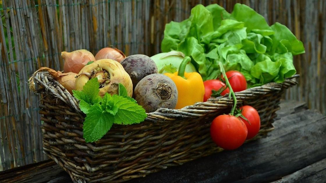 Корзина с овощами и зеленью