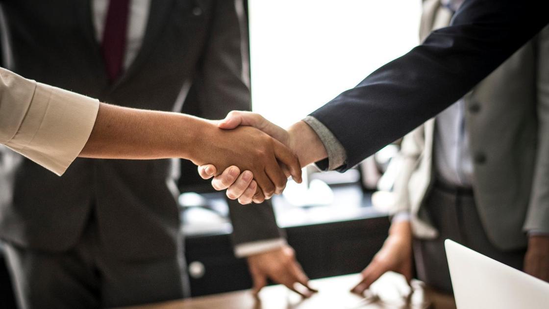 Люди в деловых костюмах жмут друг другу руки