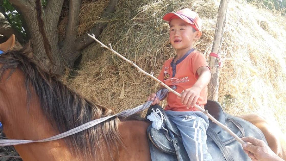 Мальчик потерялся на лошади в Жамбылской области