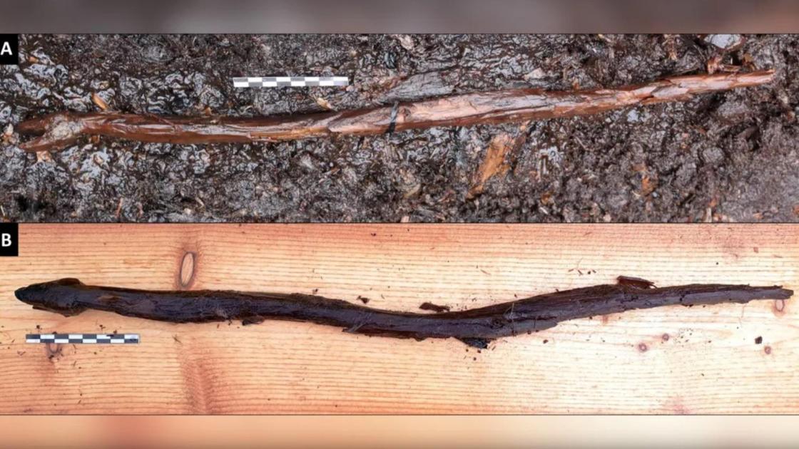 Найденный посох шамана в форме змеи