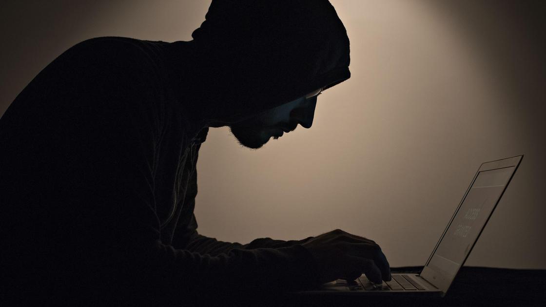 Мужчина смотри в ноутбук
