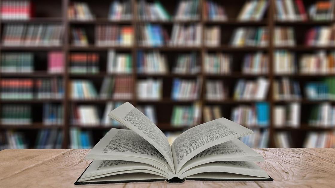 раскрытая книга на фоне библиотеки