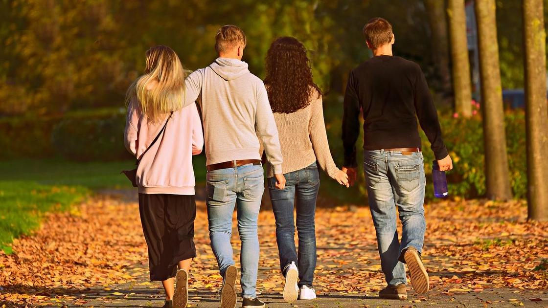 Компания друзей гуляет в парке