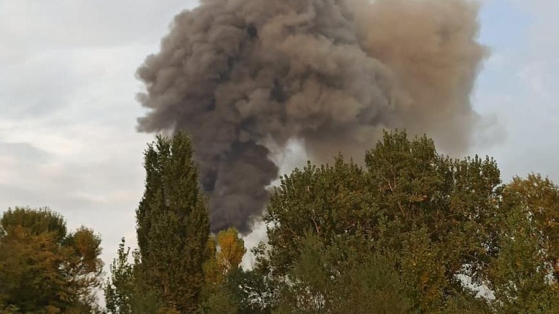 Столб дыма возвышается над деревьями