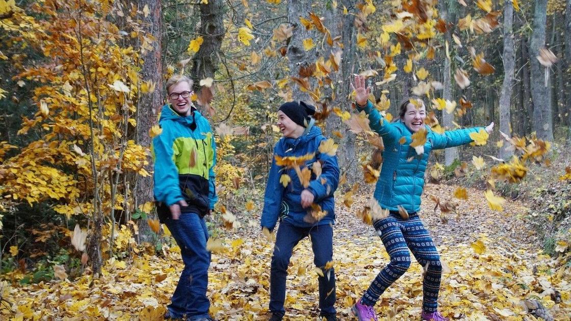 Дети разбрасывают листья в парке