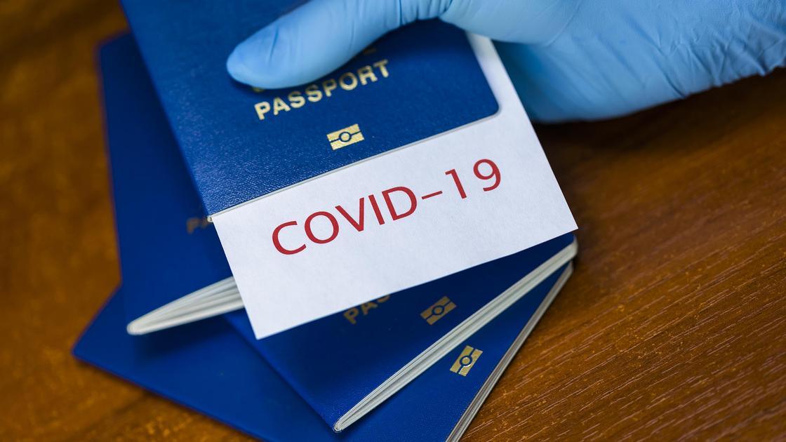 Паспорт в руке человека в медицинской перчатке
