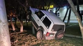 Внедорожник заехал на дерево в Алматы