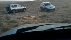 Две машины предполагаемых браконьеров стоят возле туши архара