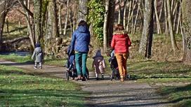 Мамы гуляют с детьми и колясками в парке