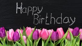 Тюльпаны и надпись Happy Birthday