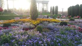 Клумба с цветами в парке