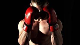 Боксер стоит в красных перчатках