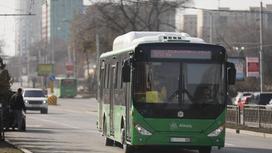 Автобус едет по улице