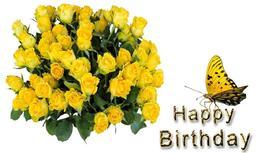 желтые розы и бабочка, поздравление с днем рождения