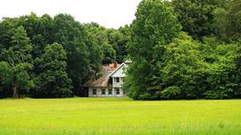 Дом стоит между деревьями