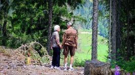 Бабушка и дедушка в лесу