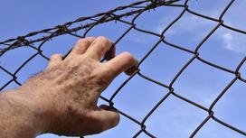 Мужская рука тянется к колючей проволоке