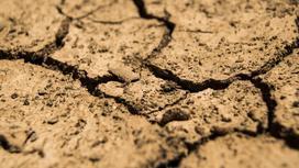 Земля треснула от засухи