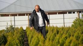 Али Алиев