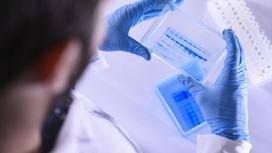 Врач осматривает лабораторные образцы в ходе работы над вакциной от КВИ