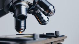 Микроскоп стоит на столе