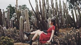 девушка на фоне кактусов