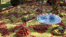 Реки из винограда на саммите ОДКБ