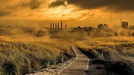 Дым в поле