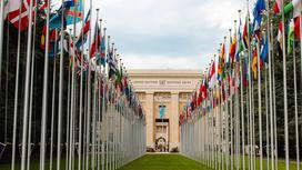 ООН. Фото pexels.com