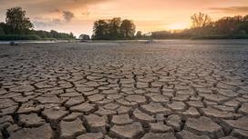 Земля потрескалась от засухи