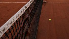 Сетка и мяч