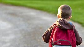 Школьник идет по дороге