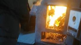 Собак сжигали в Актобе