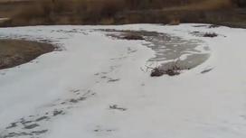 Река покрылась белой пеной