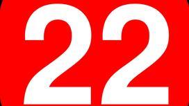 число 22