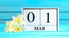 Календарь с 1 мая и белые нарциссы