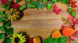 растения на столе