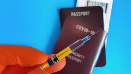 Паспорт вакцинации и шприц