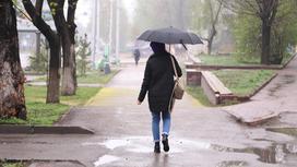 Девушка с зонтом идет под дождем