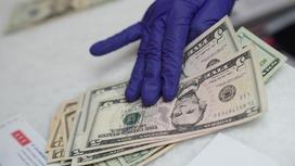 Рука в перчатках держит доллары