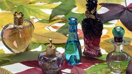 Флаконы с духами на фоне листьев