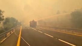 Израильские пожарные тушат леса
