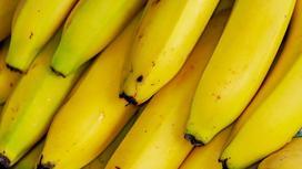 Свежие спелые бананы