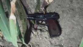 Пистолет лежит в кустах в Шымкенте