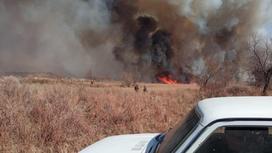 Трава горит в Прибалхашье