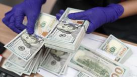 Человек в перчатках считает доллары