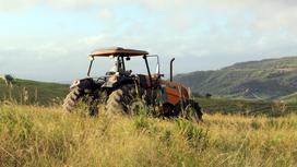 Мужчина на тракторе едет по полю