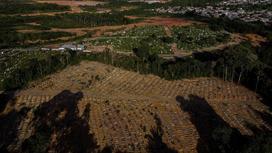 Сотни могил погибших от COVID-19 в Бразилии