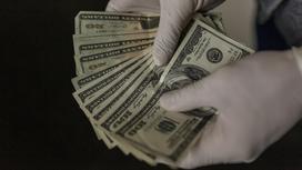 Человек в перчатках держит в руках доллары